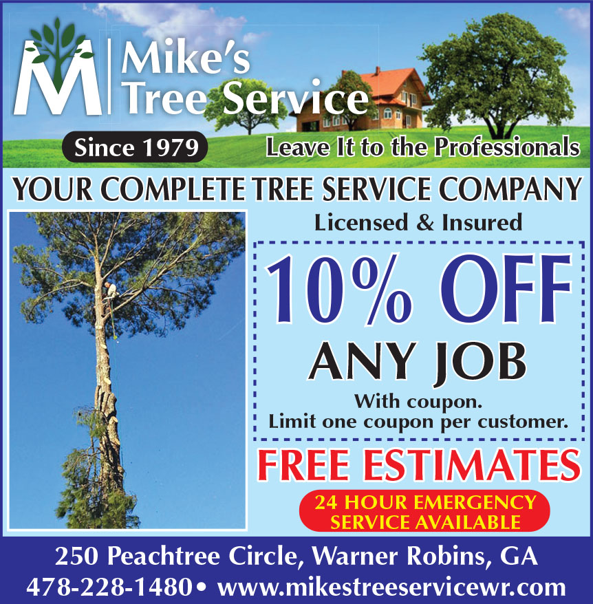 MIKES TREE AND LANDSCAPIN