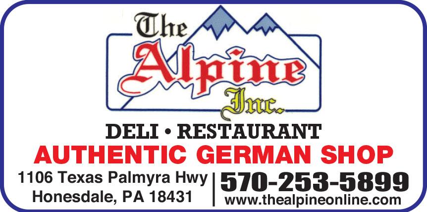 THE ALPINE INC