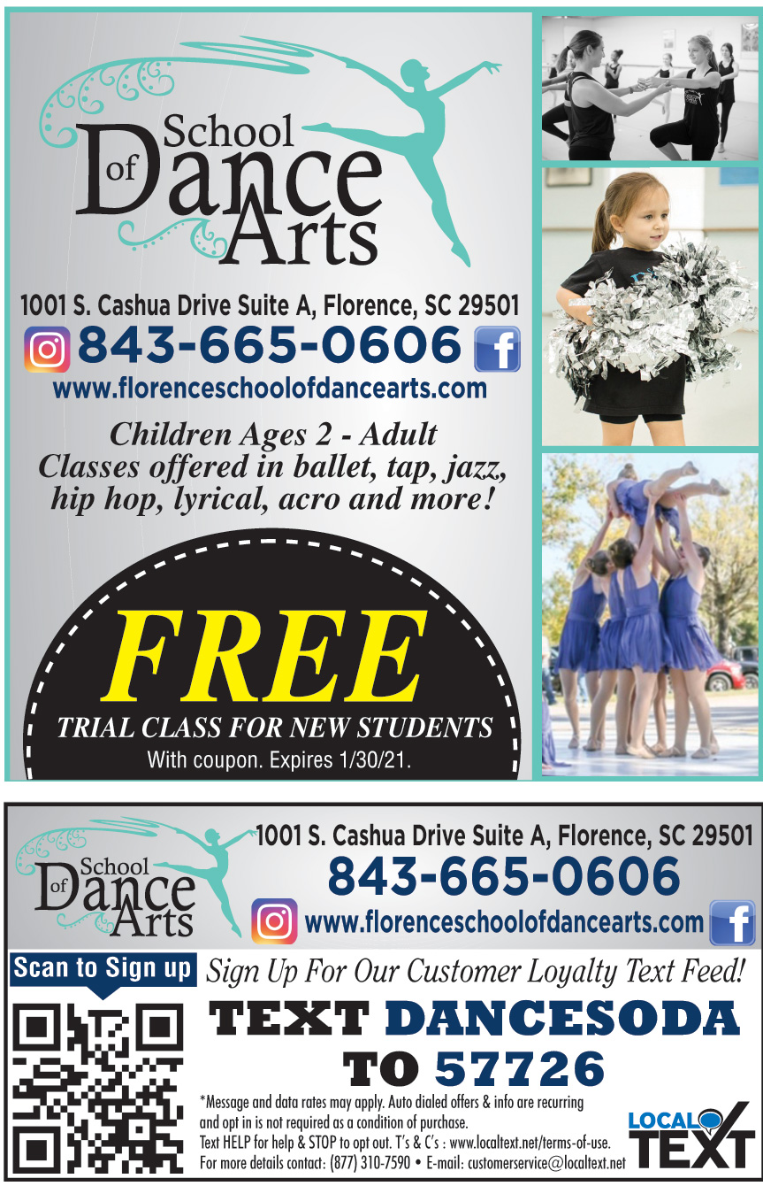 SCHOOL OF DANCE ARTS LLC