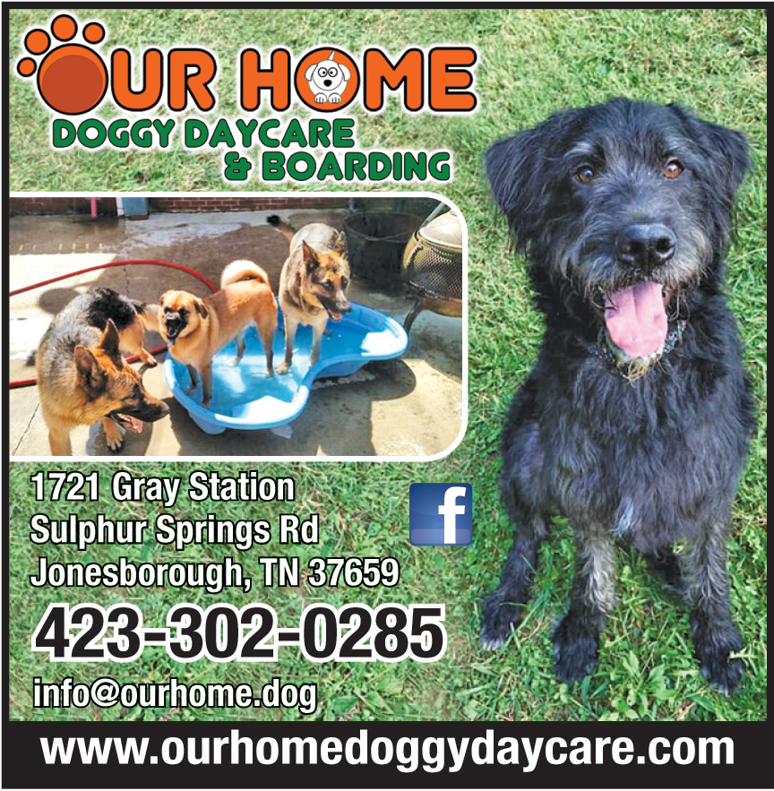 OUR HOME DOGGIE DAYCARE