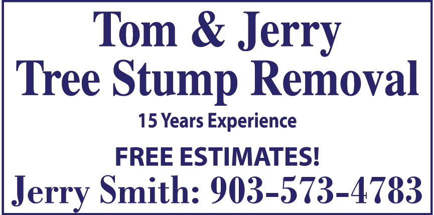 TOM AND JERRY TREE STUMP