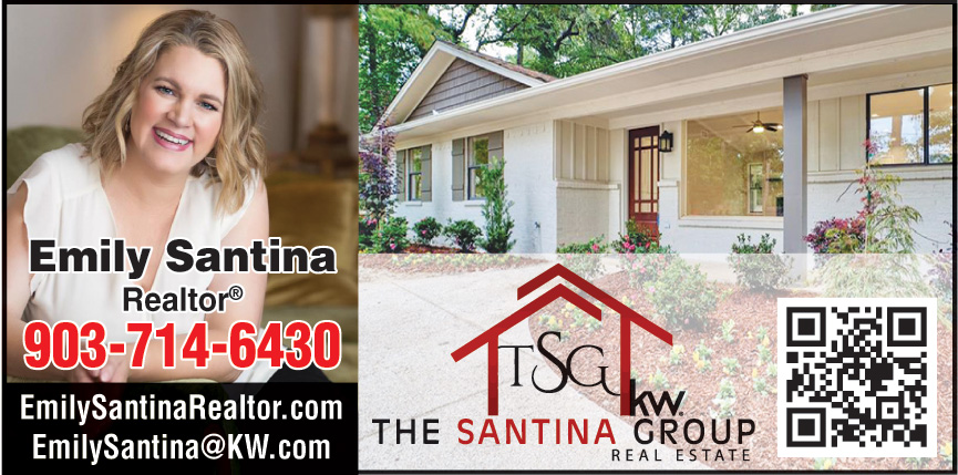 THE SANTINA GROUP