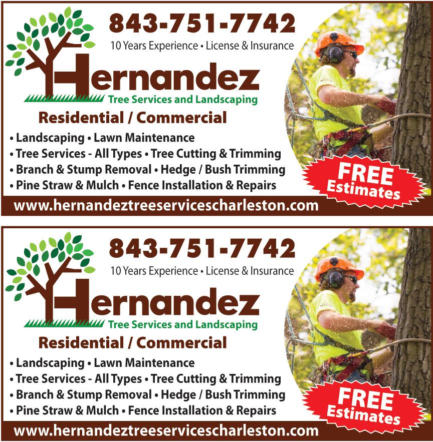HERNANDEZ TREE SERVICE