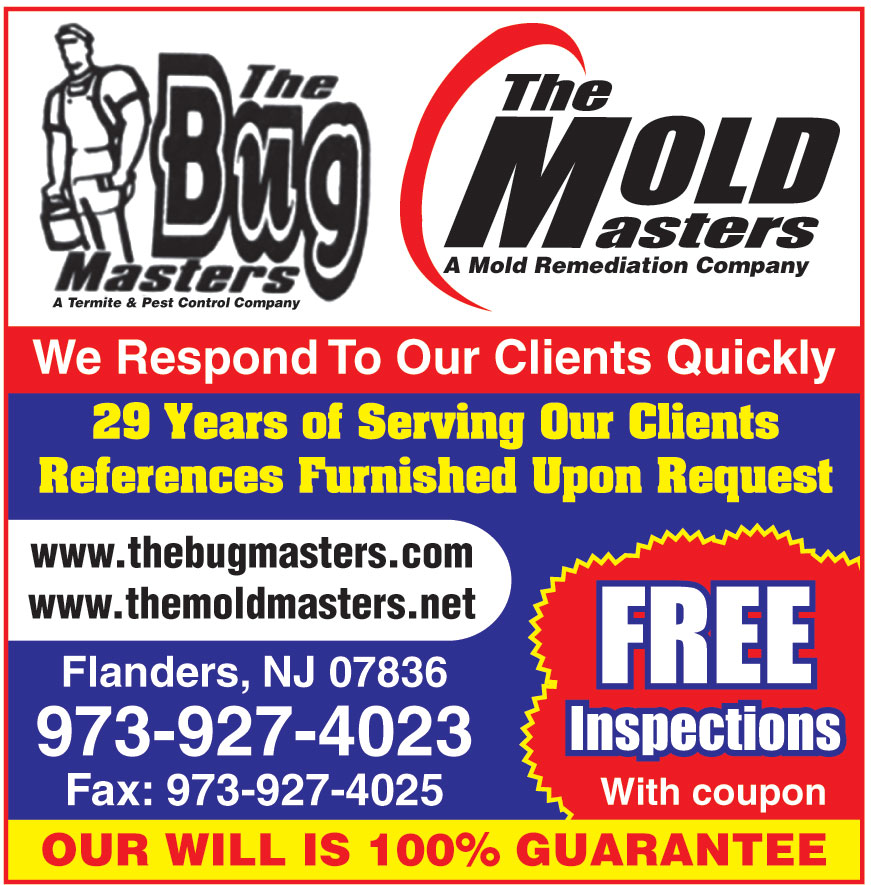 THE BUG MASTERS THE MOLD