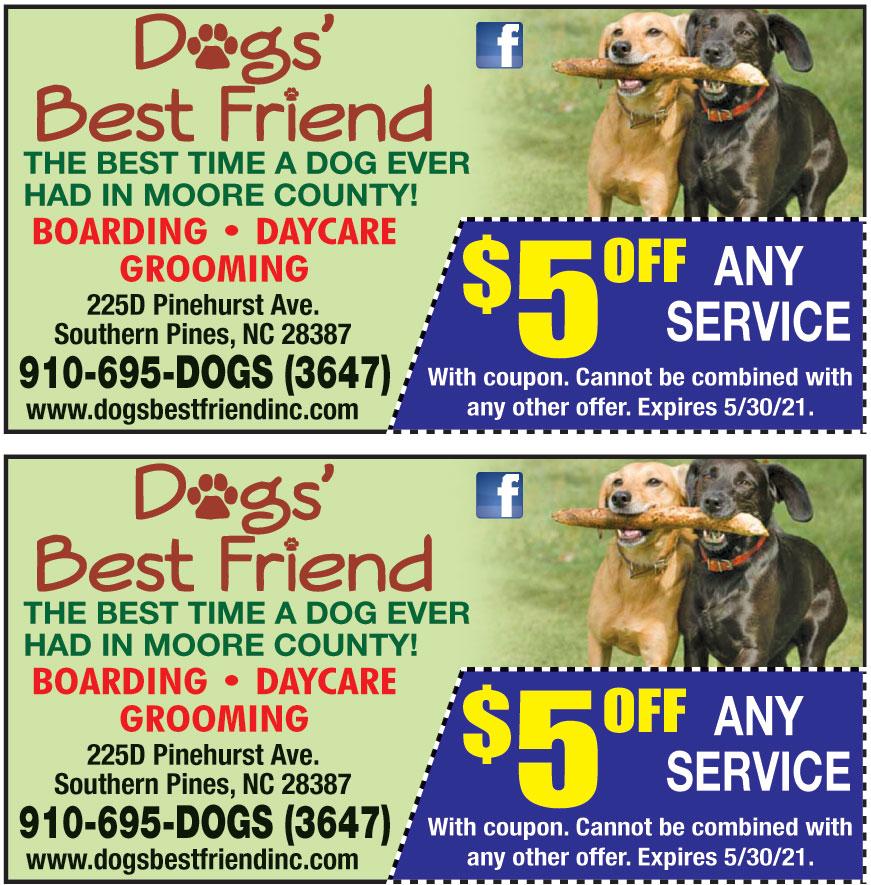 DOGS BEST FRIEND INC