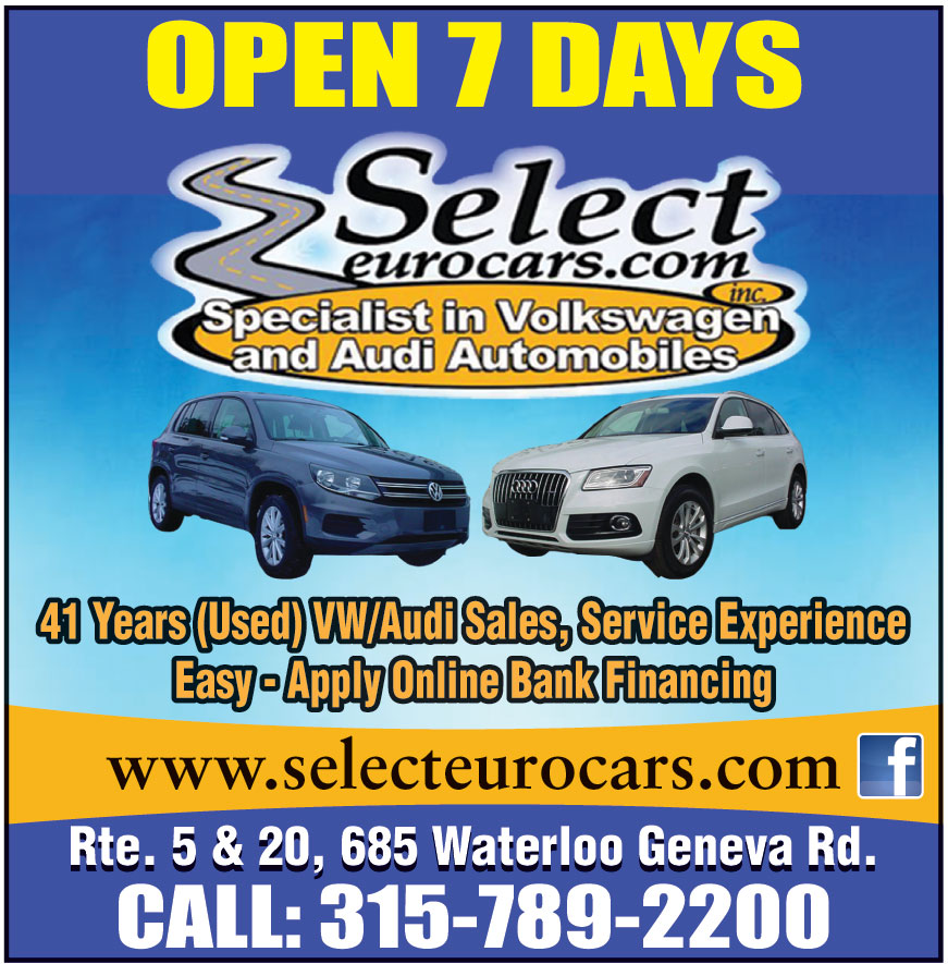 SELECT EUROCARS INC