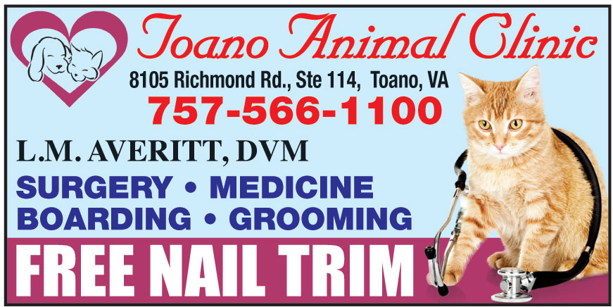 TOANO ANIMAL CLINIC
