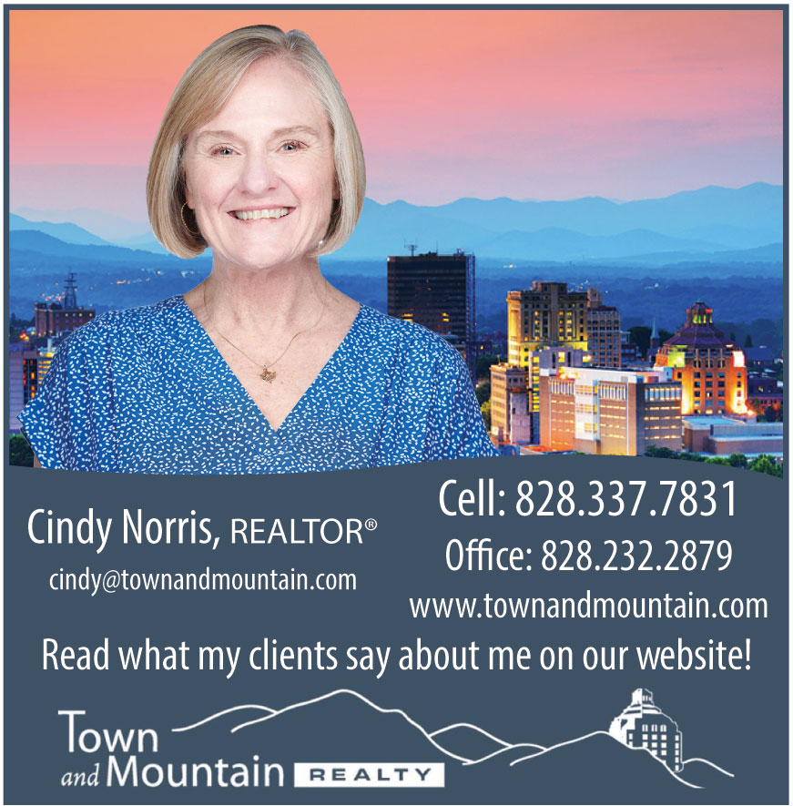 TOWN AND MOUNTAIN REALTY
