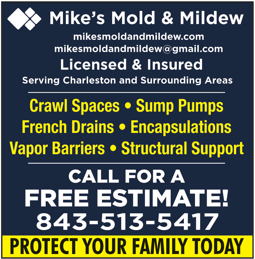MIKES MOLD AND MILDEW