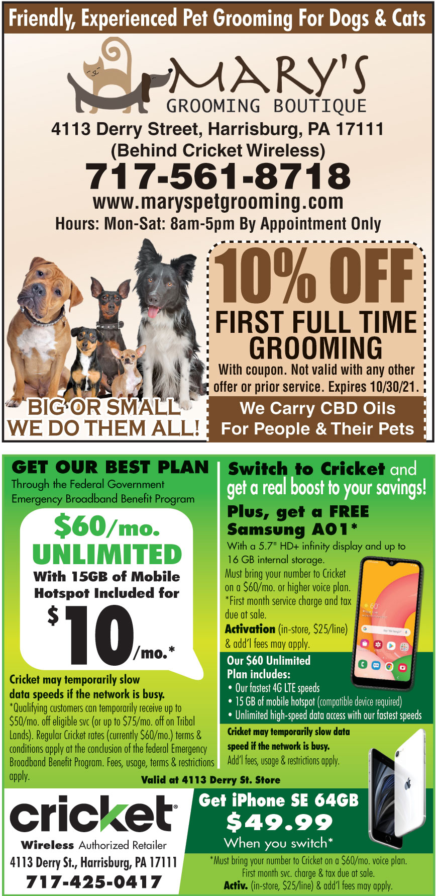10 Off On First Full Time Grooming Online Printable Coupons Usa Local Free Printable Shopping Coupons