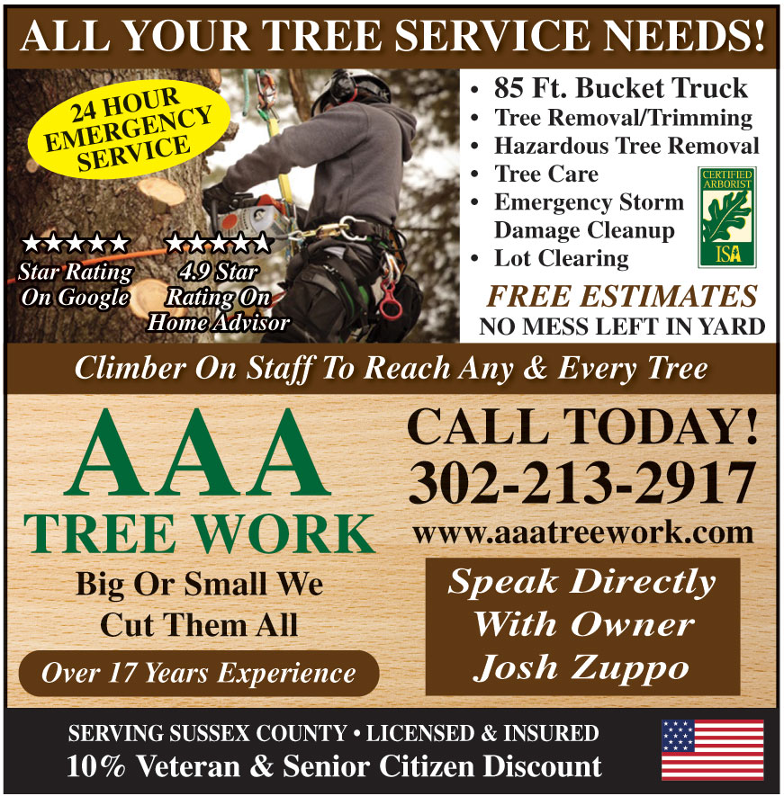 AAA TREE WORK